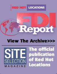 FDI Report copy